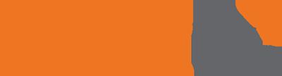 BirdDogHR Logo ATS